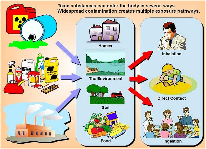 Multiple toxics exposure pathways- Families Advocating for Chemical & Toxics Safety